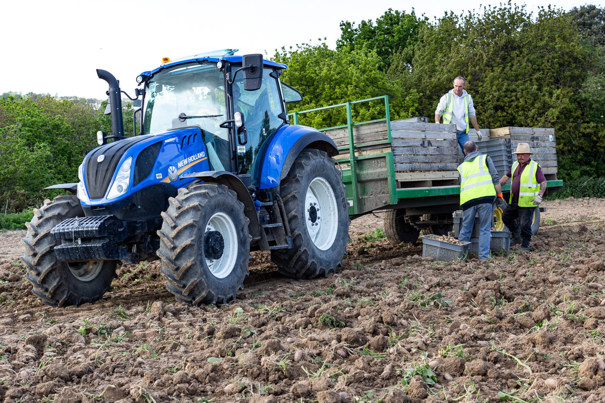 Fruit And Vegetable Market Chefs Guide To Jersey Royals Tractor