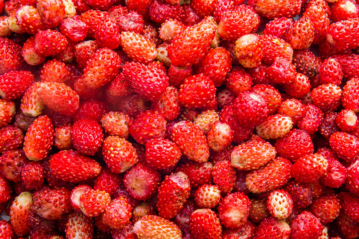 Fruit And Vegetable Market Chefs Guide To Strawberries May 2018 Frais De Bois