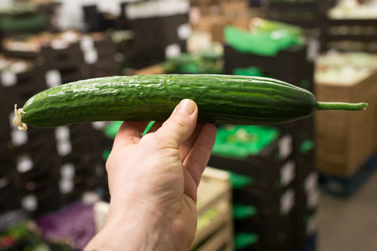 Fruit And Vegetable Market Report April 2018 English Cucumbers