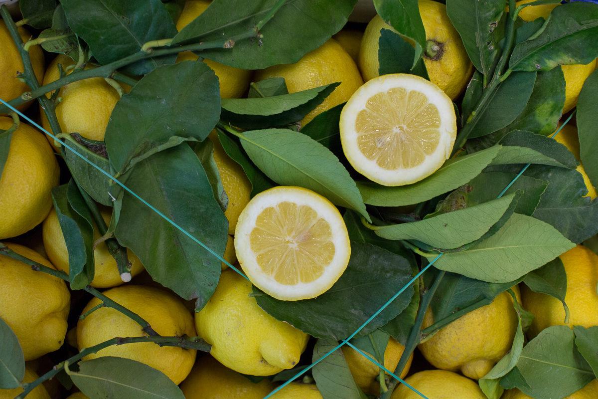 Fruit And Vegetable Market Report April 2018 Lemons