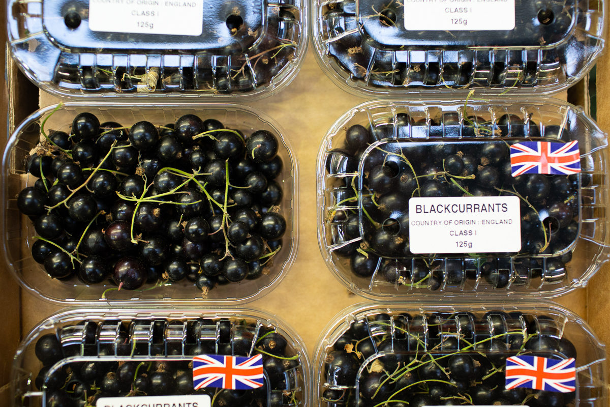 Fruit And Vegetable Market Report August 2018 Blackcurrants