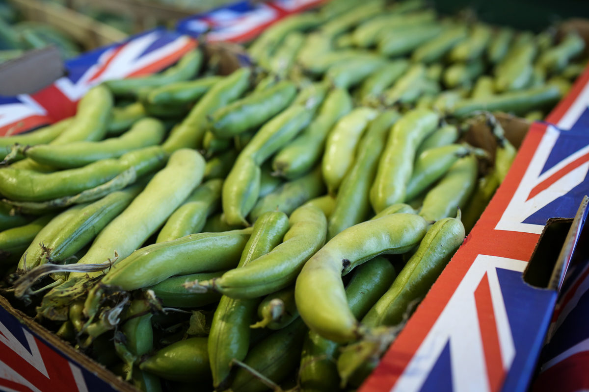Fruit And Vegetable Market Report August 2018 Broad Beans