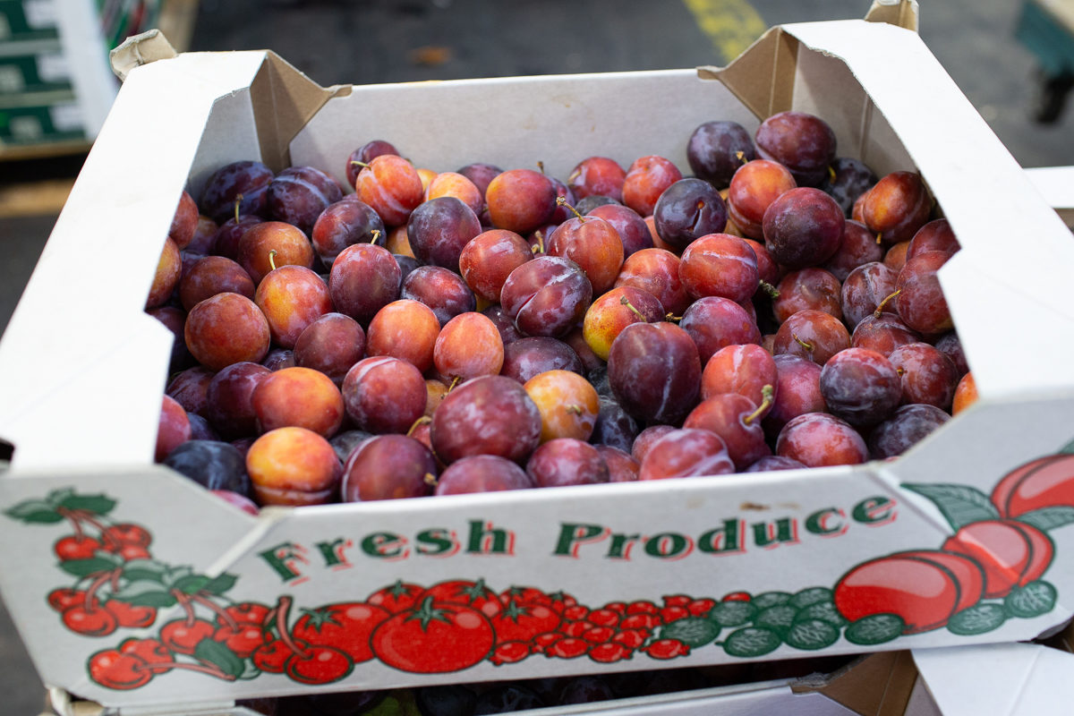 Fruit And Vegetable Market Report August 2018 Plums