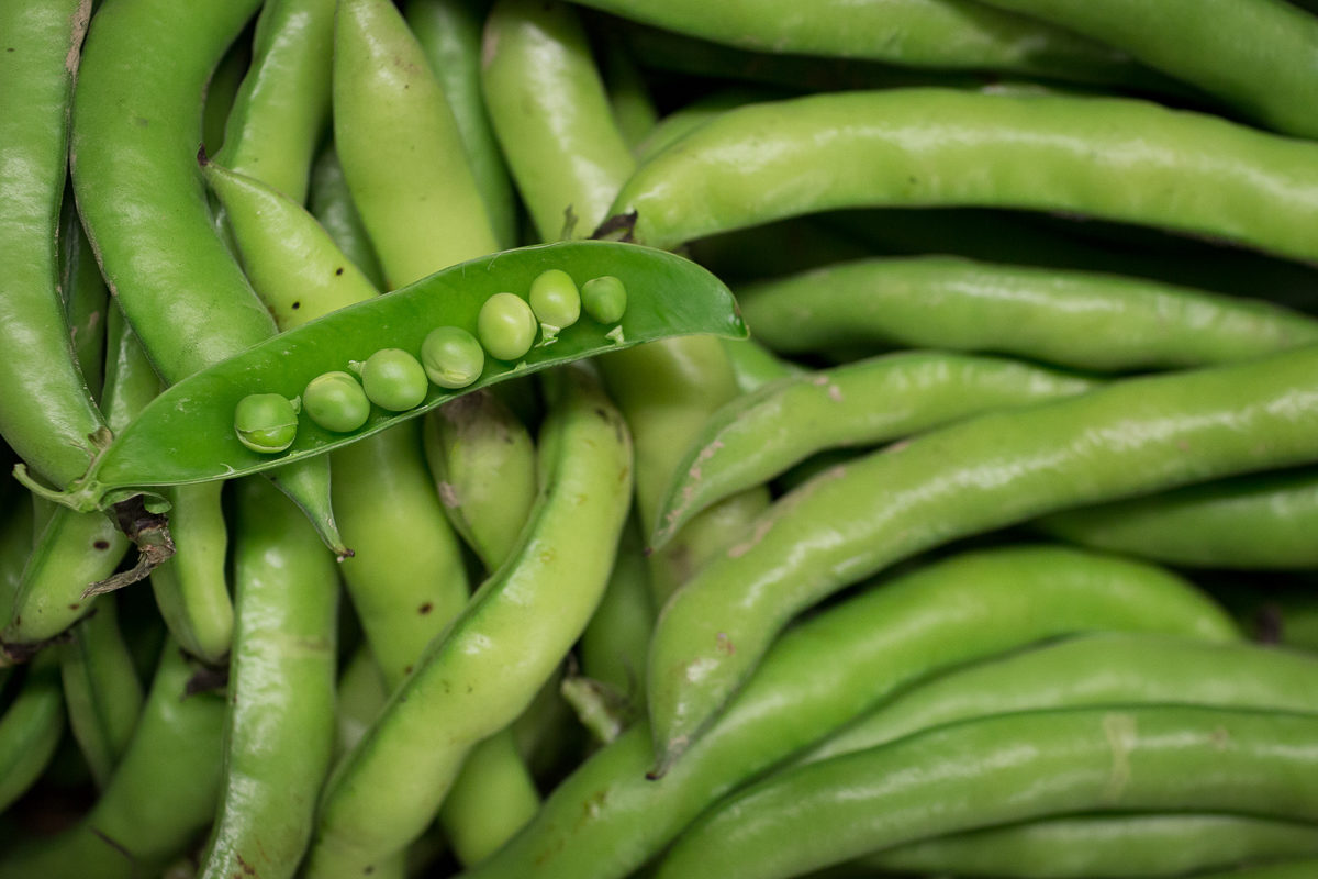 Fruit And Vegetable Market Report February 2018 Broadbeans