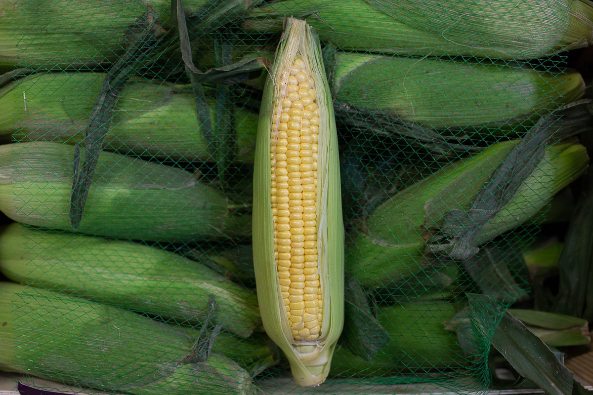 Fruit And Vegetable Market Report July 2018 Sweetcorn