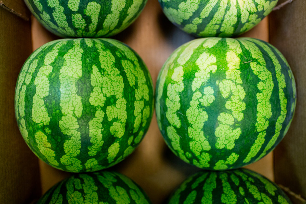 Fruit And Vegetable Market Report July 2018 Watermelons
