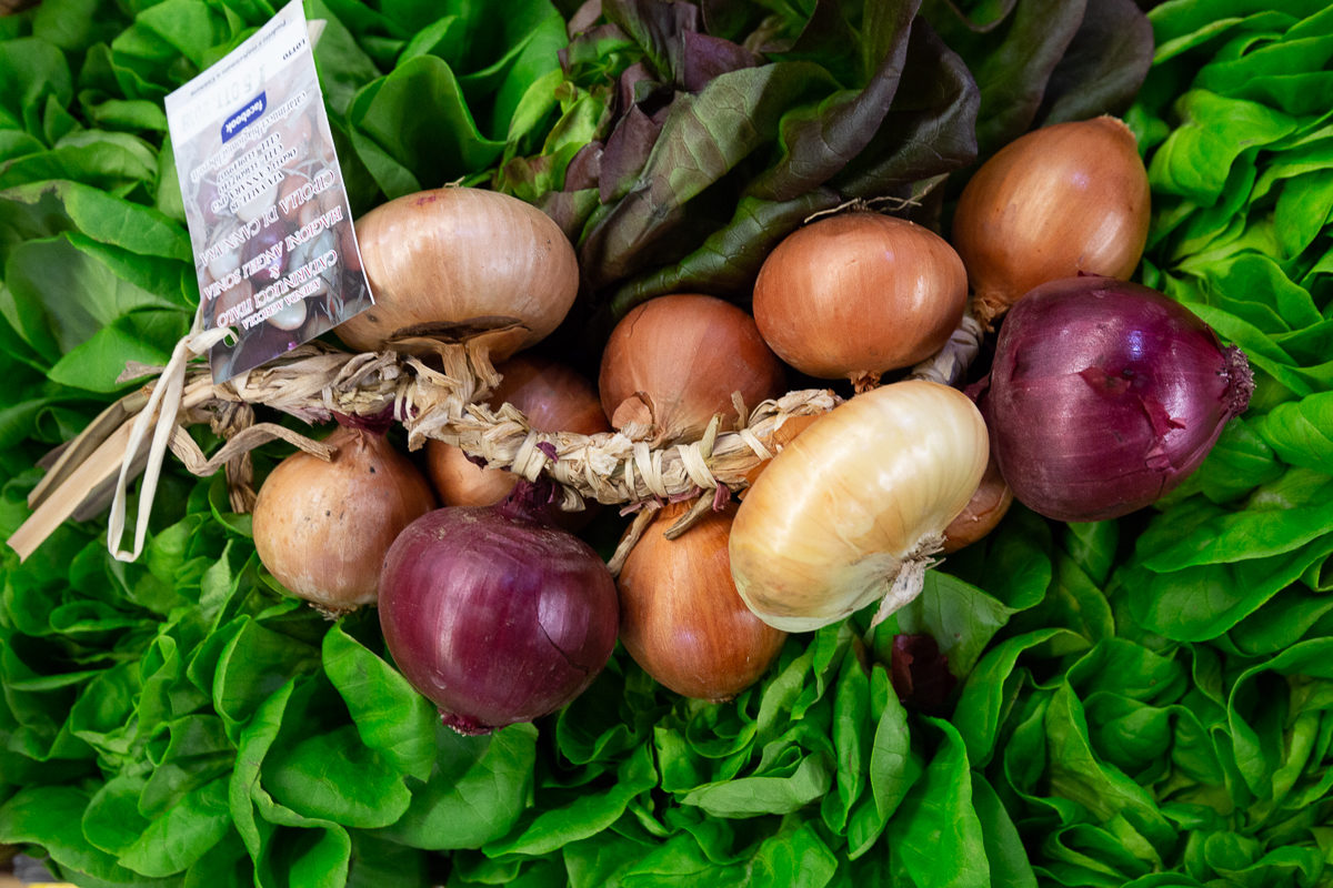 Fruit And Vegetable Market Report November 2018 Onions