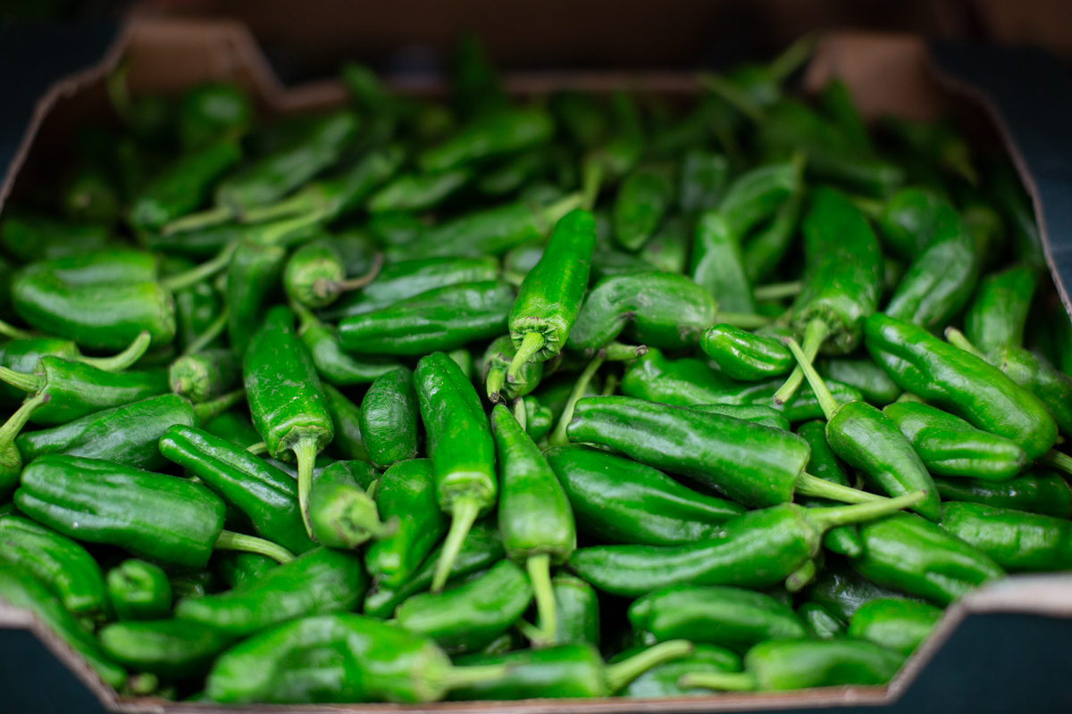 Fruit And Vegetable Market Report November 2018 Padron