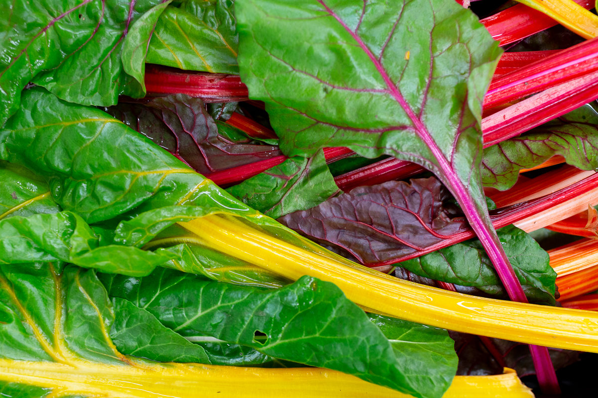 Fruit And Vegetable Market Report November 2018 Rainbow Chard