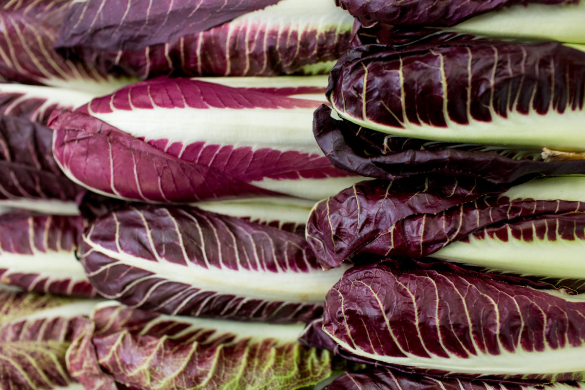 Fruit And Vegetable Market Report October 2017 Radicchio