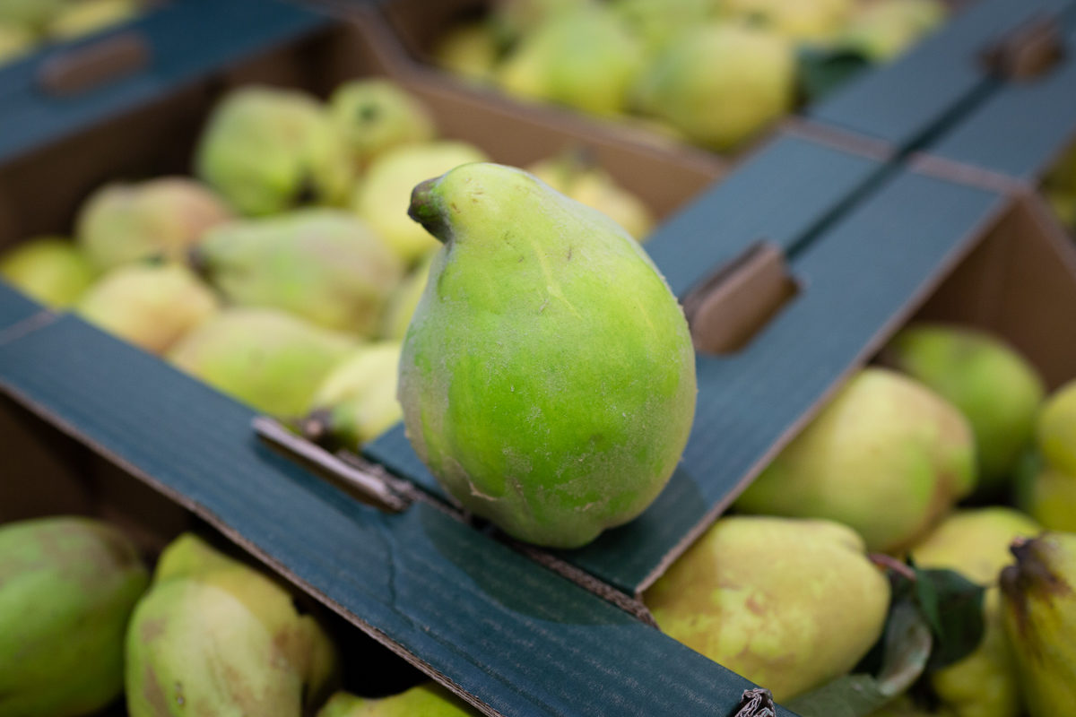 Fruit And Vegetable Market Report October 2018 Quince