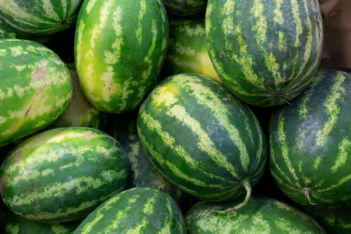 Fruit And Vegetable Market Report September 2018 Watermelons