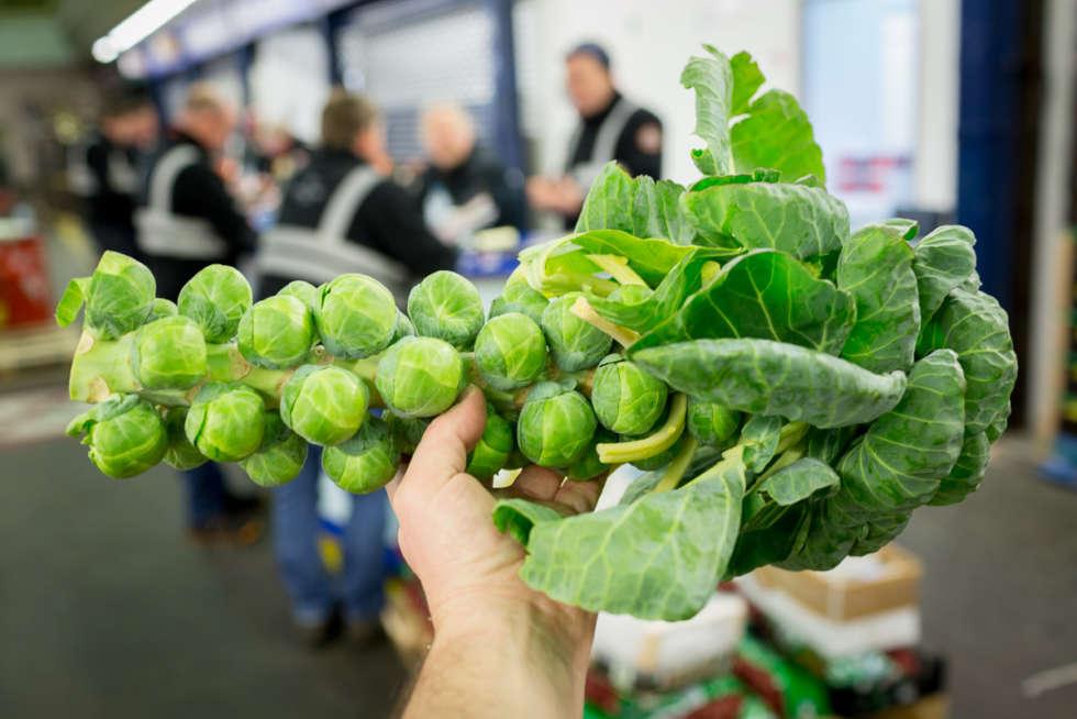 Fruit and veg in season this December