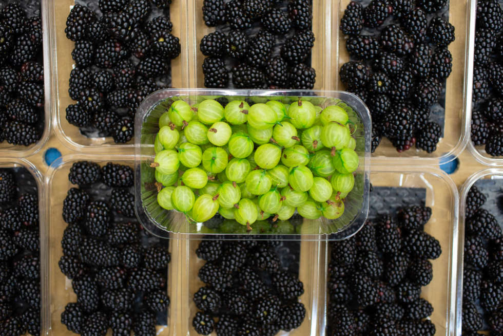 Fruit and veg in season this July