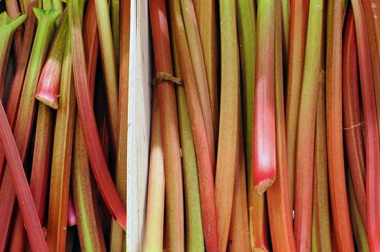 British Rhubarb