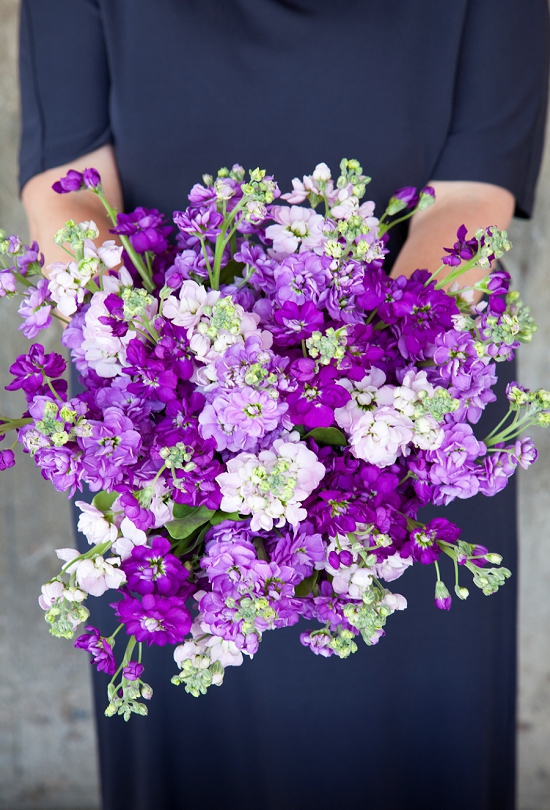 Pinstripes and Peonies - figure and lilac bouquet