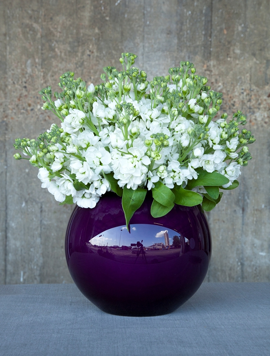 Pinstripes and Peonies - white stocks purple bowl