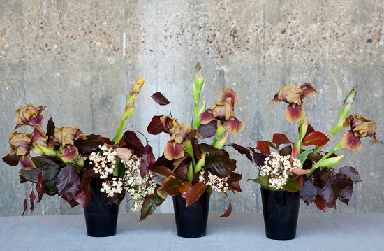 Shane Connolly Deep and Copper - Three Pots