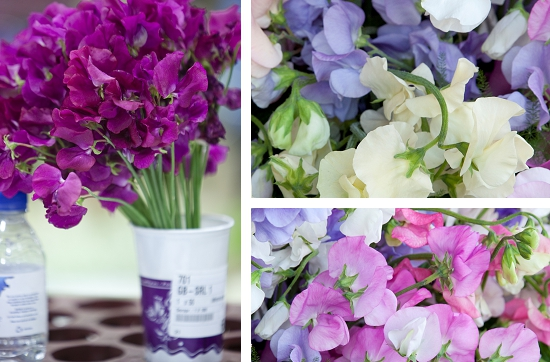 Sweet peas at New Covent Garden Market