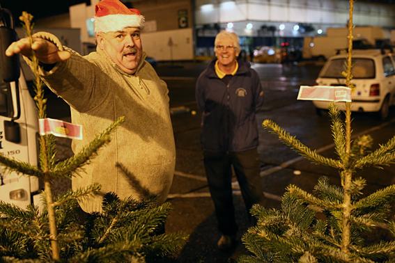 Joe Pearmain, Christmas Tree Seller at Rogers Fencing