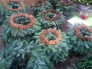 DEC_pre-made_pine_wreaths.jpg