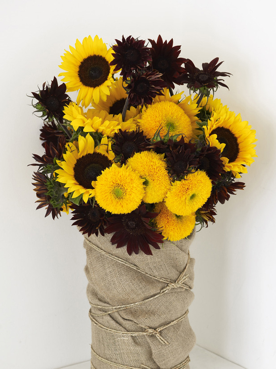 Bloomsbury Flowers sunflower arrangement - New Covent Garden Flower Market - Sunflowers Product Profile