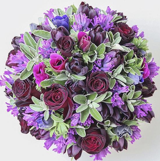 Anemone design by McQueens