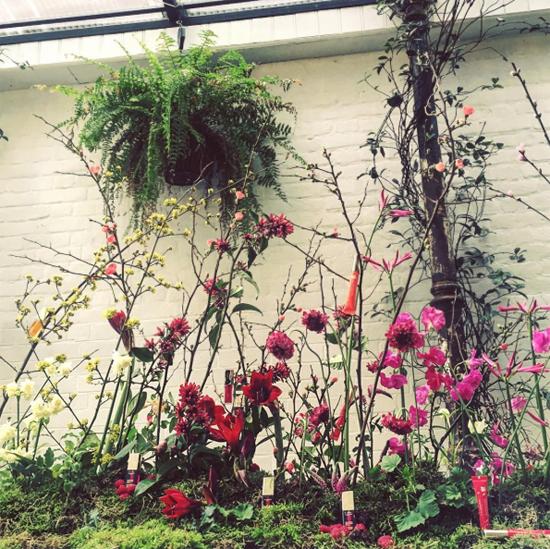 JamJar Flowers Instagram