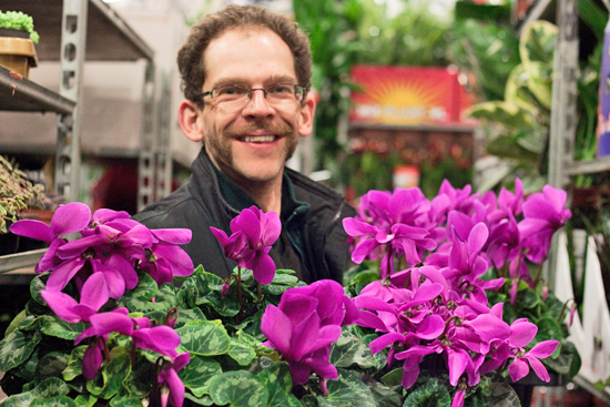 New Covent Garden Flower Market - Product Profile - Christmas Plants - Mark Collier