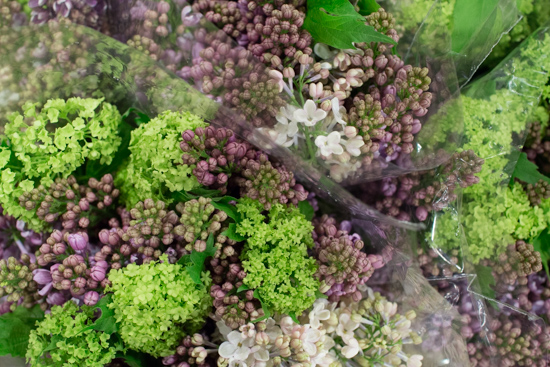 Lilac & Viburnum Opulus Mix at New Covent Garden Flower Market - March 2016