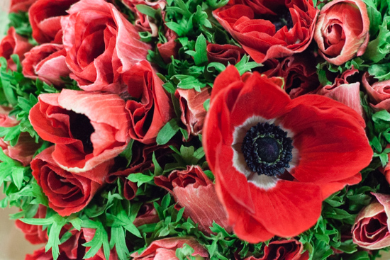 Red anemones at New Covent Garden Flower Market - Christmas 2015