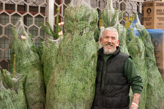 Eric of Evergreen with Christmas trees at New Covent Garden Flower Market - Christmas 2015