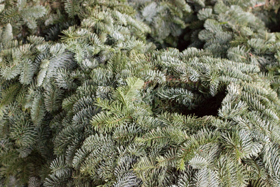 Blue pine wreaths at New Covent Garden Flower Market - Christmas 2015