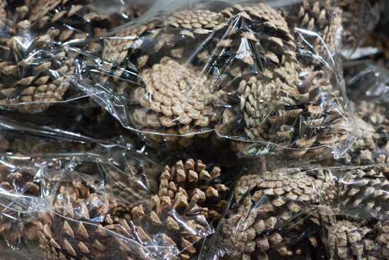 Natural pine cones at New Covent Garden Flower Market - Christmas 2015
