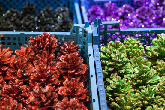Colourful glittered pine cones at New Covent Garden Flower Market - Christmas 2015