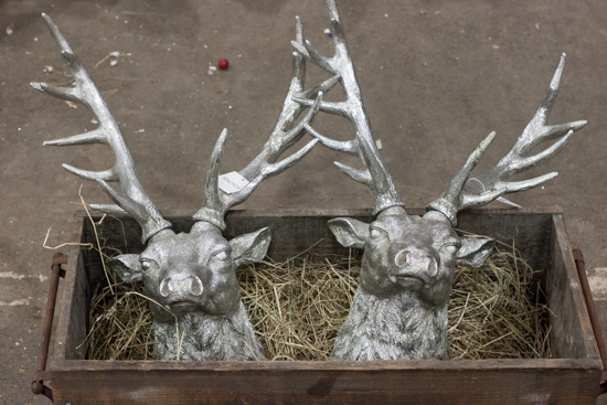Silver stag heads at New Covent Garden Flower Market - Christmas 2015