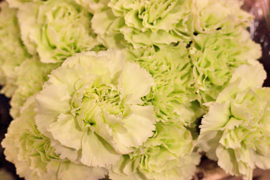 White Colombian carnations at New Covent Garden Flower Market