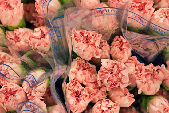 Pink Colombian carnations at New Covent Garden Flower Market