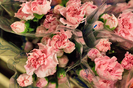 Pink spray carnations at New Covent Garden Flower Market