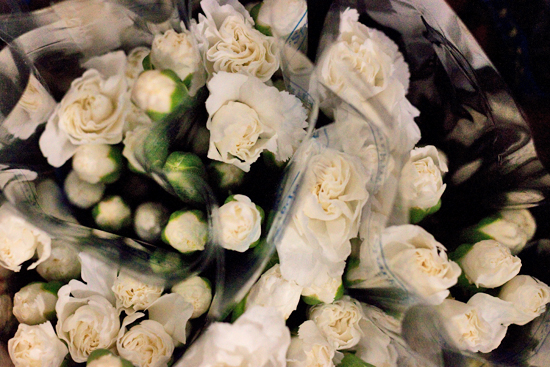 White spray carnations at New Covent Garden Flower Market