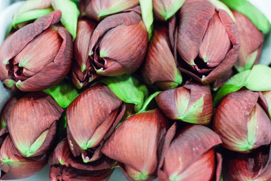 Dark red liberty amaryllis at New Covent Garden Flower Market - December 2014