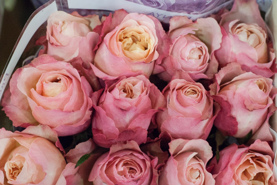 Edith David Austin roses at New Covent Garden Flower Market - August 2015
