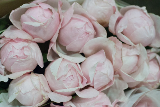 Peony Pink roses at New Covent Garden Flower Market - August 2015