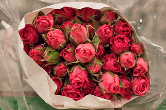 Pink twinkle bride spray roses at New Covent Garden Flower Market