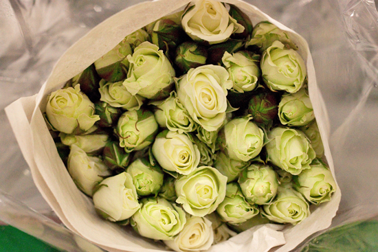 Pale yellow viviane spray roses at New Covent Garden Flower Market