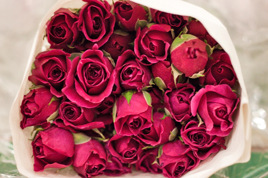 Pink hot majolica spray roses at New Covent Garden Flower Market