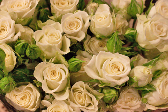 Snowflake spray roses at New Covent Garden Flower Market