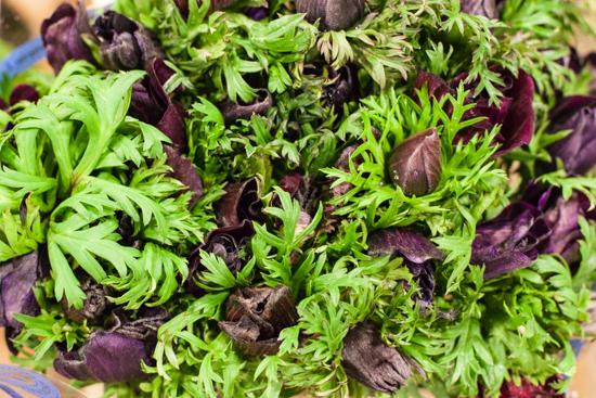 Burgandy/ Black anemones at New Covent Garden Flower Market - March 2015