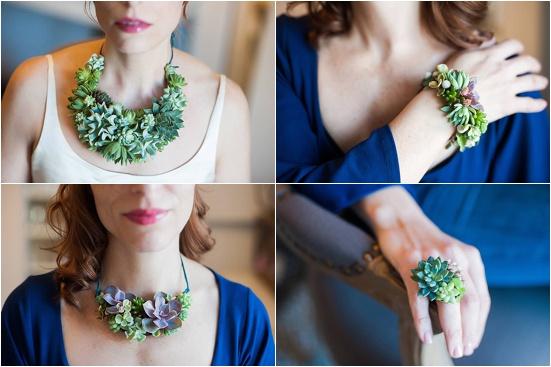 Designs using succulents