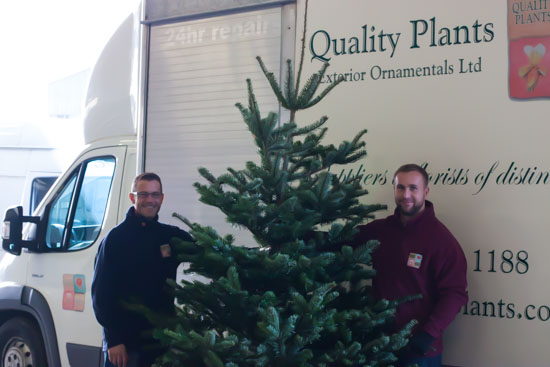 Christmas Trees with quality plants at New Covent Garden Flower Market - Christmas Special - December 2014